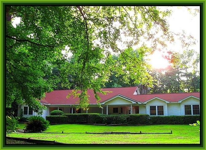 Texas Walker County Huntsville Unbelievable 3 Ac Home